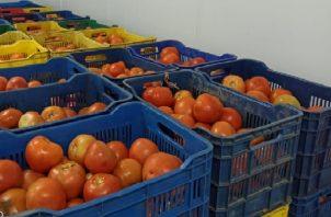Las 155 cajas de tomates fueron puestas en custodia de la Cadena de Frío de David, para evitar que se dañe. Foto: Mayra Madrid