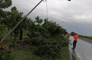 Se registraron daños de consideración en el sistema eléctrico de Azuero. Foto: Thays Domínguez