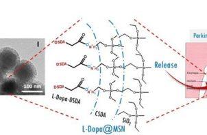 """Recreación de cómo los """"nanovehículos"""" podrían hacer una liberación controlada de un medicamento utilizado contra el parkinson. Foto: EFE"""