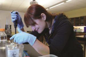 Apuesta por impulsar el interés de las mujeres panameñas en la ciencia y tecnología. Cortesía