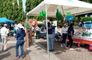En el evento ferial se distribuyeron material informativo, plantones y artículos promocionales. Foto: Mayra Madrid.