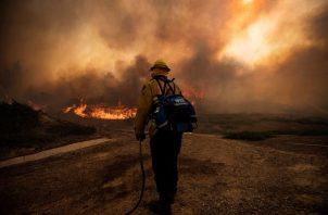 California vivió en 2020 el peor año de su historia en cuanto a número de incendios y superficie quemada, ya que ardieron más de cuatro millones de acres, que son 1.618.742 hectáreas. EFE