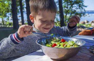 Los niños pueden ser muy selectivos a la hora de comer. Foto: Pixabay