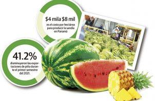 La producción de melón en el país tiene un costo de 6 mil dólares por hectáreas, lo que hace poco rentable las exportaciones en la actualidad.