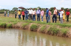 Se construirá un sistema de estanques para la siembra de tilapias híbridas. Foto. Cortesía Arap