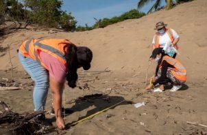 Las actividades integraron el concepto de ciencia ciudadana como vía para concientizar a los ciudadanos, evaluar la cantidad y tipo de basura plástica marina.