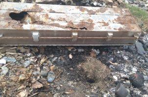 Dentro del ataúd estaban los huesos, incluyendo parte del cráneo y mandíbula. Foto: Thays Domínguez