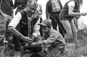 """Que la reforestación sea una ley obligada y permanente hasta que reforestemos todos el país. Es decir, ir creando una """"Cultura Verde"""" que se promueva desde la infancia. Foto: EFE."""