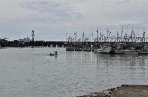La infraestructura portuaria y los aeropuertos son también elementos a favor. Foto/Eric Montenegro