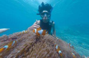 Quienes practican buceo tienen la responsabilidad de cuidar el patrimonio submarino en cada inmersión. Ilustrativa / Pexels