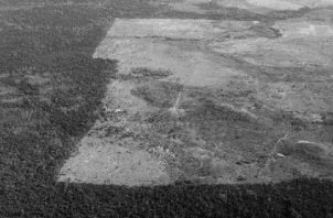 Es un imperativo que, tanto los gobiernos como los individuos, tomen consciencia de la hecatombe que producirá el cambio climático. Vista de la deforestación del Amazonas, otro de los graves problemas de la acción humana. Foto: EFE.