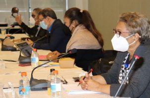Las comisiones temáticas del diálogo comenzaron sus deliberaciones a inicios de junio y se les concedió un mes de prórroga. Cortesía