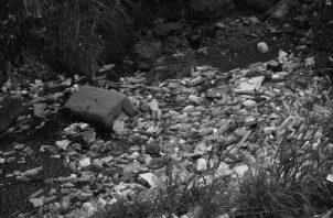 La falta de educación cívica, la inexistencia de planes de Estado para el reciclaje de desechos y el pésimo servicio de recolección de basura, son apenas algunas de las causas. Foto: Archivo. Epasa.