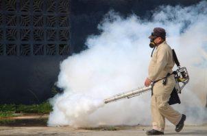 Se mantienen las jornadas de nebulización para controlar el mosquito.