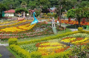 El alcalde de Boquete dijo que se le realizará una invitación al presidente salvadoreño, Nayib Bukele a la Feria de las Flores y del Café . Foto/Archivo