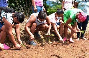 """Un grupo de 40 mujeres rurales asiste a la Escuela Campo """"Una Luz en el Camino"""". Foto: Cortesía Mides"""