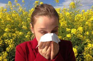 Las lluvias de octubre podrían aumentar el riesgo de crisis asmáticas. Pixabay/Ilustrativa