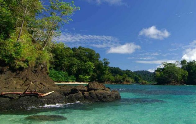 Bucear en isla Coiba te permitirá ver peces de diferentes tamaños, sin tener que gastar mucho dinero. Fotos: ATP